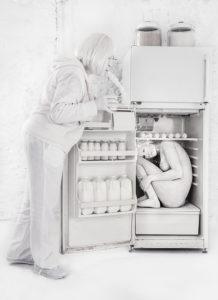 fridge+copy