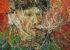 پۆرترهیتی ڤان كۆخ | كاری زێنگ ڤانژی